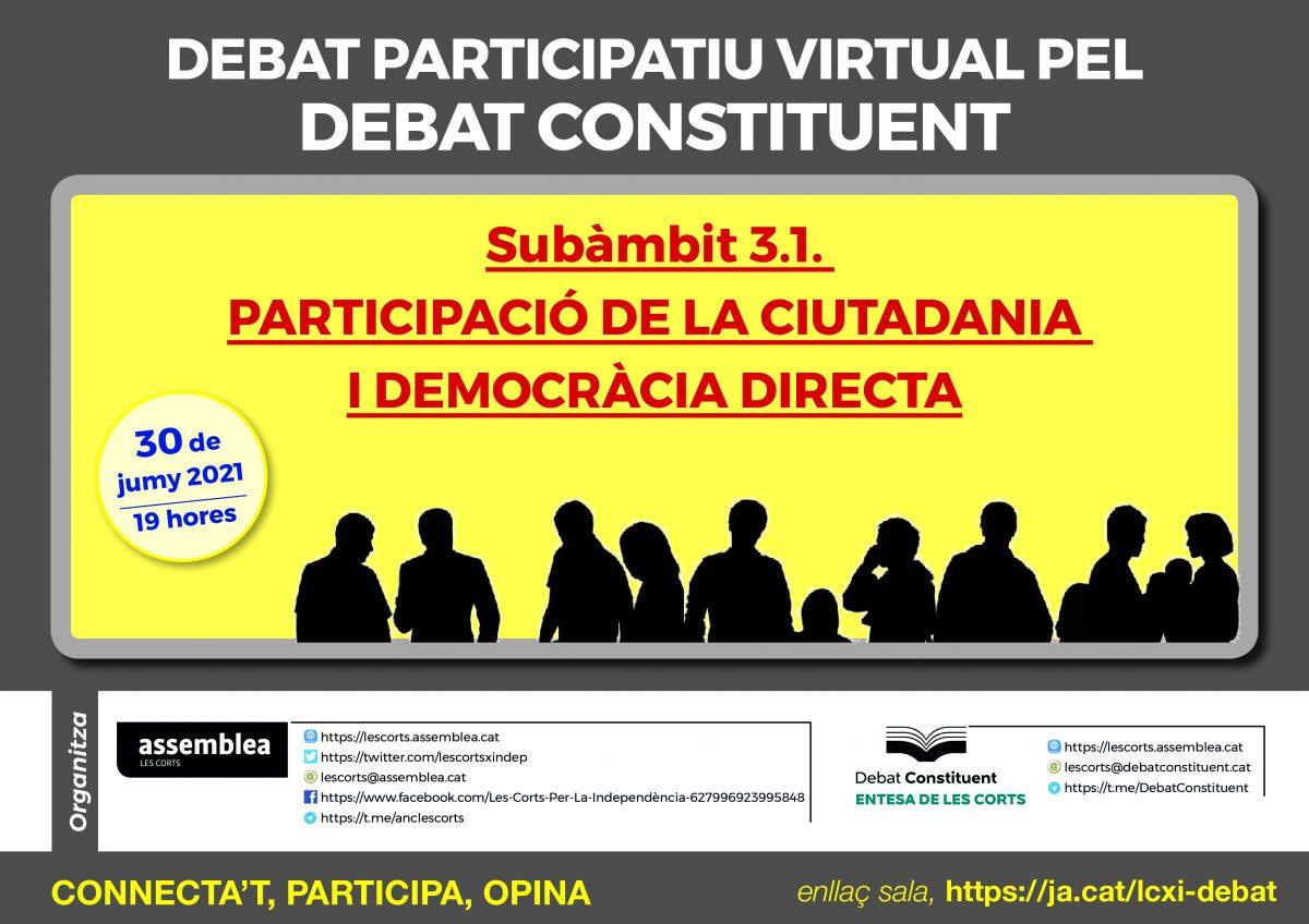 Debat participatiu virtual sobre participació ciutadana i democràcia directa
